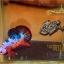 คัดเกรดปลากัดครีบสั้น-Halfmoon Plakat Fancy Dragon thumbnail 2