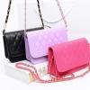 B025 Sweet Chain Bag