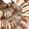 เปลือกหอย น้ำตาลอ่อน 8 มิล (จีน) (1เส้น)