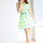 Sweet Grid Dress (green)
