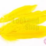 ขนนก(ก้าน) สีเหลืองทอง (5ชิ้น)