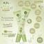 Mini Matcha Serum เซรั่มน้ำตบมัทฉะ ราคาปลีก 65 บาท / ราคาส่ง 52 บาท thumbnail 3