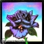 Thin Lizzy - Black Rose 1980 1lp thumbnail 1