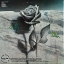 Keith Jarrett - death and the flower 1lp thumbnail 2