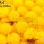 ปอมปอมไหมพรม สีเหลือง 1ซม (100ชิ้น) thumbnail 1