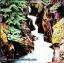 Cat Stevens - Back To Earth 1978 1lp thumbnail 1