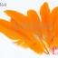ขนนก สีส้ม 5 ชิ้น thumbnail 1