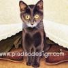 กระดาษสาพิมพ์ลาย สำหรับทำงาน เดคูพาจ Decoupage แนวภาพ แมวสีสวาดตากลมโตสีเหลือง แอบอยู่ใต้ผ้าคลุมโต๊ะลายลูกไม้