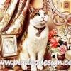 กระดาษสาพิมพ์ลาย สำหรับทำงาน เดคูพาจ Decoupage แนวภาำพ เจ้า TC แมวน้อยสุดสวย นั่งชูคออย่างสง่าวางมาดเป็นนางแบบให้เจ้านายวาดภาพ