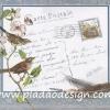 กระดาษสาพิมพ์ลาย สำหรับทำงาน เดคูพาจ Decoupage แนวภาำพ ภาพวาด เขียนโปสการ์ดถึงที่รักส่งจากแดนไกล มีนกน้อยเกาะกิ่งไม้ ดอกไม้สีขาวและขนนกอยู่ใกล้ๆ สไตล์วินเทจ vintage (ปลาดาวดีไซน์)