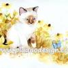 กระดาษสาพิมพ์ลาย สำหรับทำงาน เดคูพาจ Decoupage แนวภาำพ ลูกแมวน้อยตัวขาว หูน้ำตาล นั่งจ้องผีเสื้อสีฟ้าในทุ่งดอกไม้