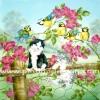 กระดาษสาพิมพ์ลาย สำหรับทำงาน เดคูพาจ Decoupage แนวภาพ ลูกแมวน้อยๆ 2 ตัว เล่นโหนตัวบนกิ่งไม้ริมรั้ว มีเพื่อนเป็นนก 4 ตัว