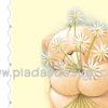 กระดาษสาพิมพ์ลาย สำหรับทำงาน เดคูพาจ Decoupage แนวภาำพ ภาพวาด ภาพแนวการ์ตูน น้องหมี ฮอลล์มาร์ค Hallmarks bear น้องหมีแ้ก้มยุ้ยมาขอความรัก มีดอกไม้สีมาให้ด้วย 8ดอก (ปลาดาวดีไซน์)