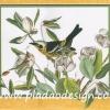 กระดาษสาพิมพ์ลาย สำหรับทำงาน เดคูพาจ Decoupage แนวภาำพ ภาพวาด นกอ้วนตัวสวยบินดอมดมดอกไม้สีขาว สวยคลาสสิค (ปลาดาวดีไซน์)