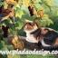 กระดาษสาพิมพ์ลาย สำหรับทำงาน เดคูพาจ Decoupage แนวภาำพ เจ้าแมวน้อย แอบหนีเจ้าของมางีบบนกิ้งไม้ มี 2 นกน้อยขับกล่อมบทเพลง thumbnail 1