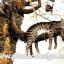 กระดาษสาพิมพ์ลาย สำหรับทำงาน เดคูพาจ Decoupage แนวภาำพ เจ้าแมวตัวดีซนเป็นที่หนึ่ง ปีนขึ้นไปนอนห้อยแขนห้อยขาบนกิ่งไม้ thumbnail 1
