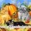กระดาษสาพิมพ์ลาย สำหรับทำงาน เดคูพาจ Decoupage แนวภาำพ ลูกแมวเปอร์เซีย 3 ตัว 3 สี น่ารักมาก ตัวเท่าฟักทองเอง thumbnail 1