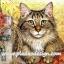 กระดาษสาพิมพ์ลาย สำหรับทำงาน เดคูพาจ Decoupage แนวภาำพ ลูกแมวตัวน้อยขนฟู น่ารักมากมาก กำลังตะกายก่ายรั้วไม้อยู่ thumbnail 1